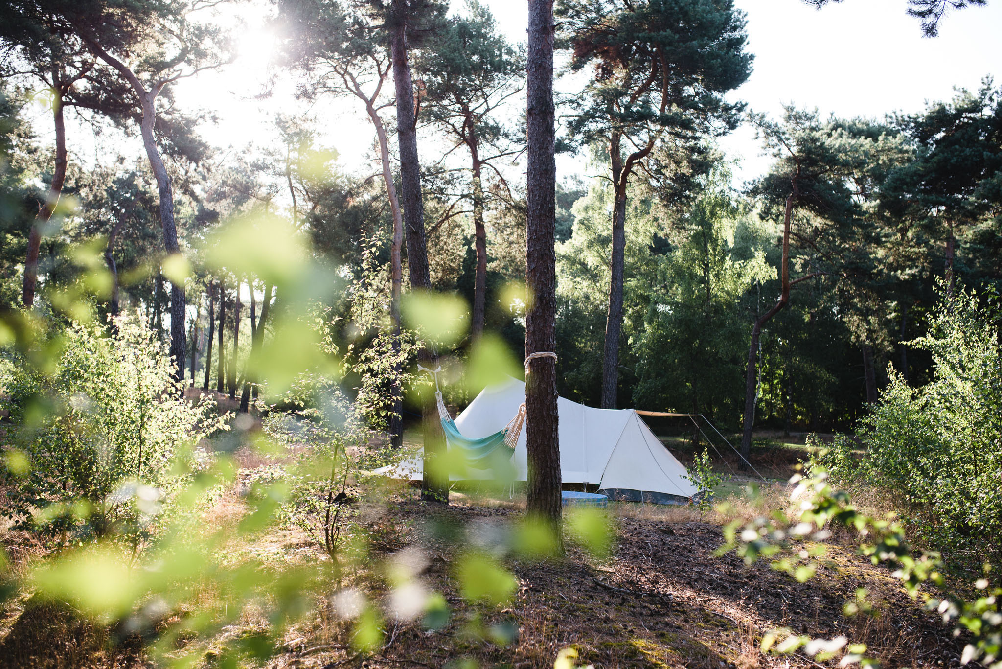 05 van 06 - prachtig mooie kampeerplekken - 5450
