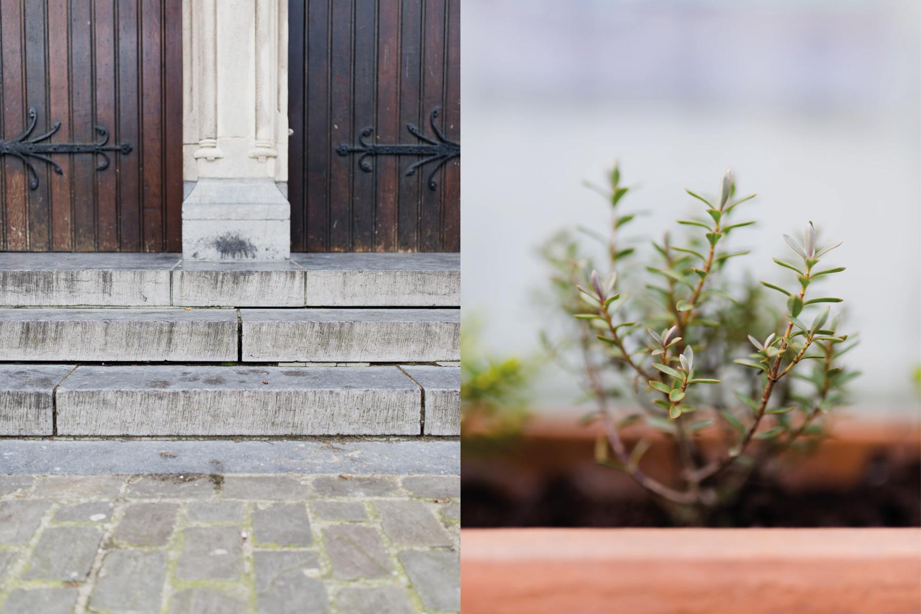 Antwerpen fotografie (7 van 10)