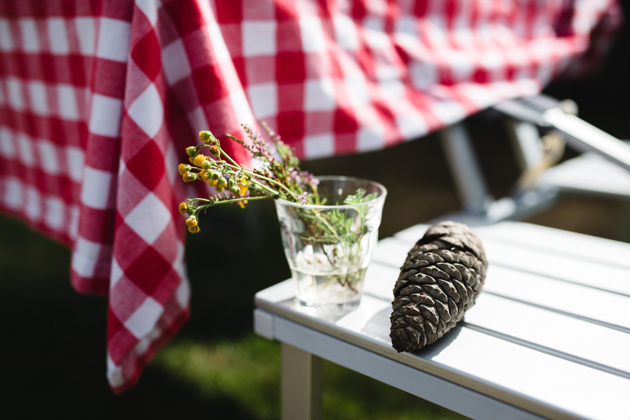 Kampeerboeketten Staatsbosbeheer bloemen op de camping Laurie Karine de fotograaf - 2348-2
